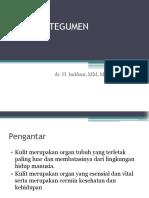 SISTEM INTEGUMENTUM.pptx