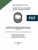 Nathasia_Tesis_Títuloprofesional_2016.pdf