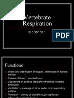 Vertebrate Respiration