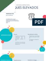 Diapositivas Tanque Elevado - Bianca