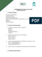 Formulario Emprendimientos Personas Mayores