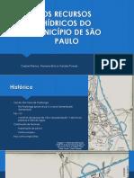 Os Recursos Hídricos Do Municipio de São Paulo