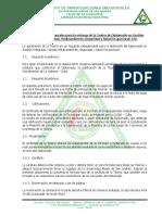 Tesina. Consideraciones Generales V1.pdf