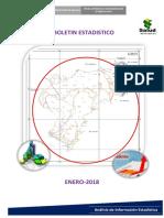 BOLETIN-ESTADISTICO-ENERO-2018.pdf