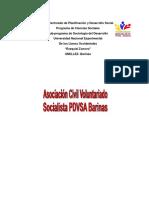 INFORME DE PRACTICAS PROFESIONALES III ANGEL.docx