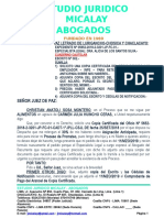 Chri Sosa Copia Certificada Alim Huincho May 2019