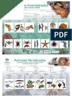 mapas-concep-rellenos-text-biomarina-umag2016.pdf