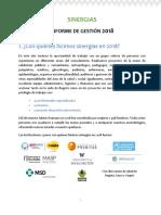 Informe gestion 2018 para medios e incidencia_sin diagramar.docx