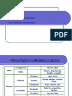 4. RECURSOS HIDROBIOLOGICOS