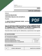 11. Especialista en gestion y conservacion vial - ARC.xlsx