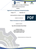 Investigacion U4 Topicos.docx