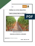 Proyecto_INVERNADERO_LUPE.doc