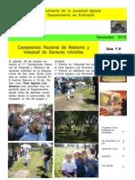 EL  BOLETIN  edición   N° 29   Noviembre   AÑO  2010