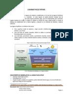 LAGUNAS-FACULTATIVAS.docx