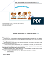 Protocolo Del Laboratorio 736
