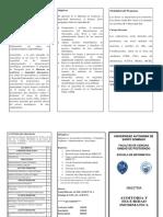 232974490-Broshoure-Maestria-en-Auditoria-y-Seguridad-Informatica-2-1.pdf