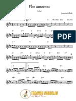 510271.pdf