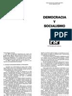 PSP (1987) - Democracia y Socialismo