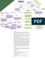 273081016-Mapa-Conceptual-Competencias.pdf