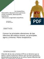 Unidad 2 Infecciones Genitourinarias
