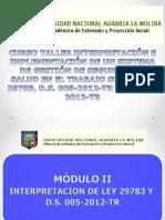 Interpretación de Ley 29783