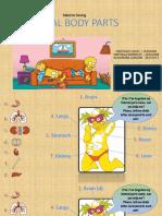 Internal Body Parts Definitive