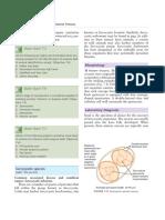 publication_4_15240_172.pdf