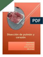 lospulmones-160507141145