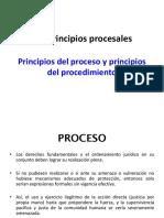 Los principios procesales I.ppt