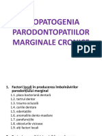 Patogenia  Parodontopatiile marginale