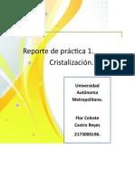 Practica 1 Cristalizacion Equipo No.2 Celeste Castro