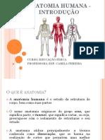 Anatomia Humana - Introdução