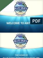 Blue Skies Presentation