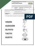 prueba de los sentidos.docx