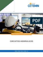 CIRCUITOS HIDRAULICOS - MEP.pdf