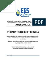 TDR_LOSA DE CONCRETO.docx