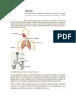 DOC-20190120-WA0023.docx