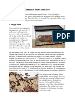 dermestid-beetle-care-sheet.pdf
