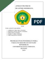 Laporan Pratikum ALAT UKUR Fisika.docx