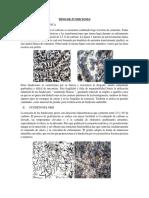 TIPOS DE FUNDICIONES.docx