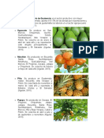 actividades economicas de Guatemala.docx