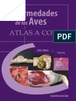 ENFERMEDADES AVICOLAS.pdf