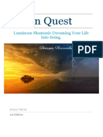 vision quest dreaming manual