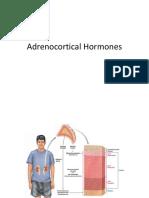 Hormon adrenokortikal.pptx