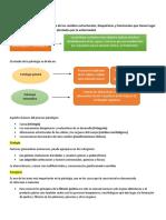 Apuntes patologí1.docx