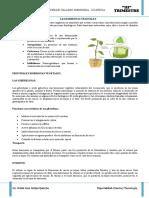 Teoria y Practica de Las Hormosnas Vegetales - Cvm 2018