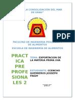 PRACTICA PRE PROFESIONAL..docx