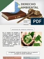 Principios del derecho ambiental.pptx
