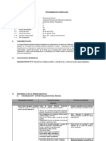 FORMATO DE PROGRAMACION CURRICULAR.docx