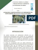 EXTRACCIÓN  E IDENTIFICACIÓN DE LOS COMPONENTES DEL ACEITE ESENCIAL DE EUCALYPTUS CAMALDULENSIS DEHN..pptx